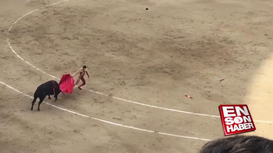 Boğa matadoru hastanelik etti