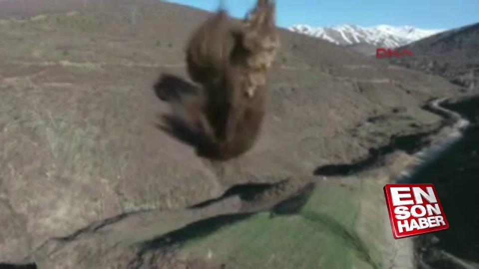 Bitlis'te PKK'ya ait 2 ton patlayıcı imha edildi