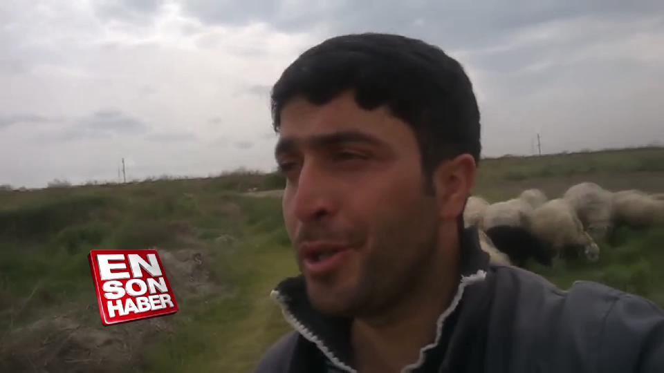 Azeri çoban Nazende sevgili şarkısını söyledi