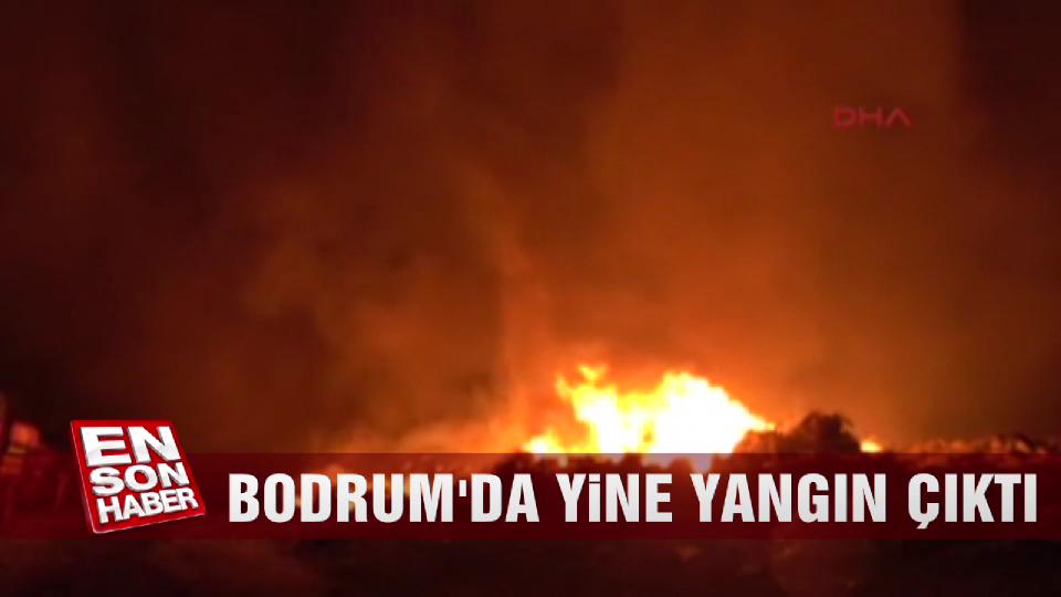 Bodrum'da yine yangın çıktı