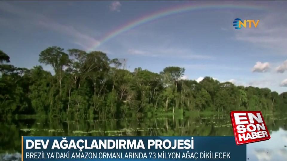 Dünyanın en büyük ağaçlandırma projesi