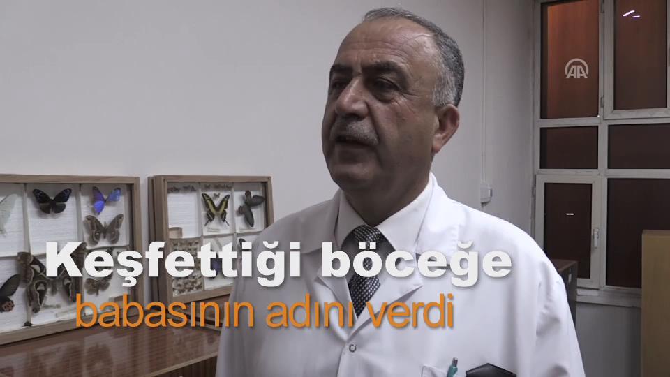 Diyarbakır'da keşfettiği böceğe babasının ismini verdi