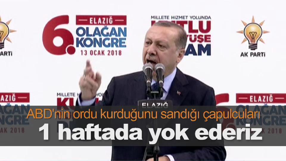 Erdoğan: Çapulcuları bir haftayı bulmaz yok ederiz