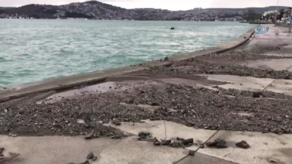 Tarabya sahilde yol çöktü