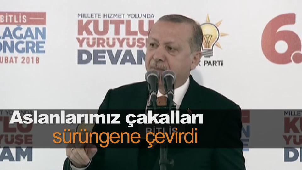Erdoğan: Aslanlarımız çakalları sürüngene çevirdi