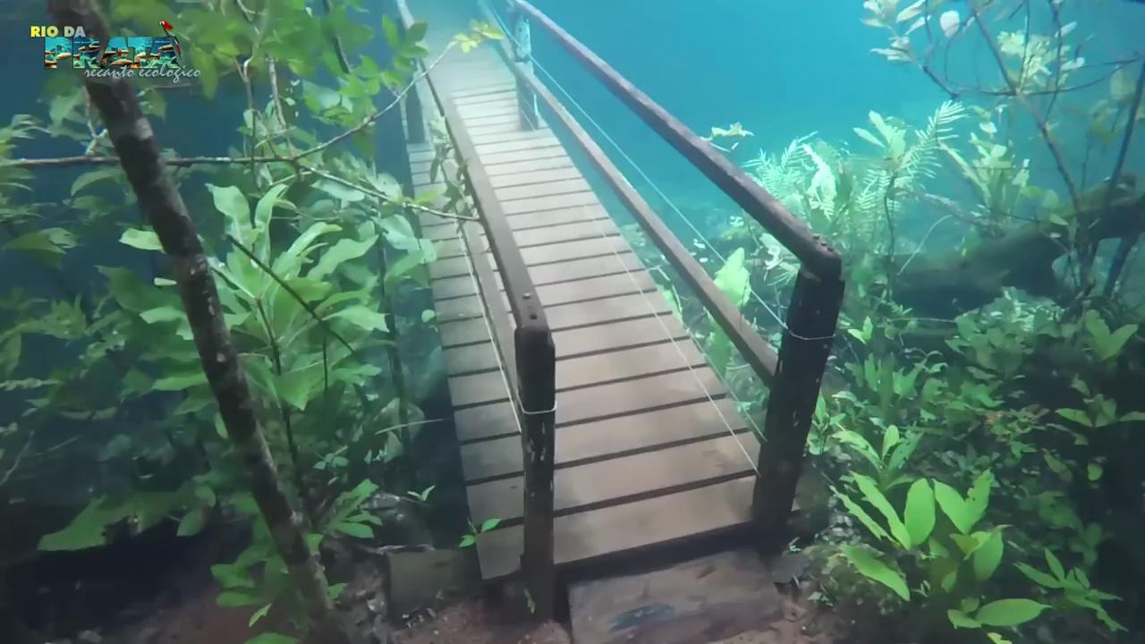 Sel sularının oluşturduğu su altı yürüme parkuru