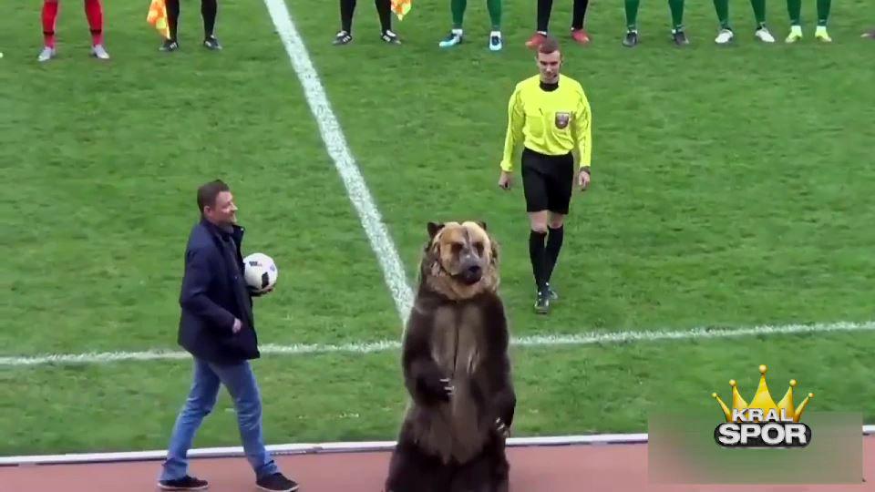 Dünya Kupası'nın Ayı'sı prova yaptı