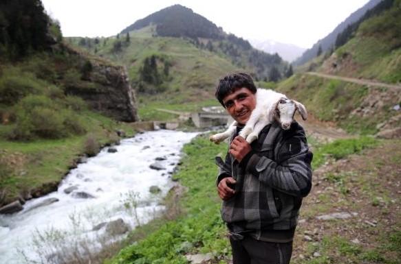 Çoban bulunamayan sürüye ithal çoban