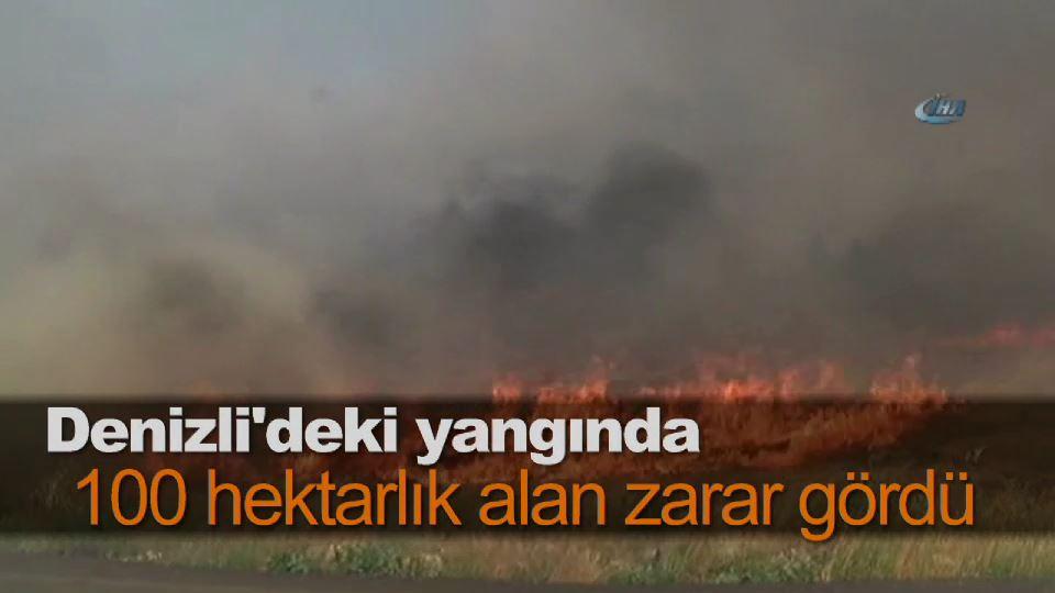 Denizli'deki yangında 100 hektarlık alan zarar gördü