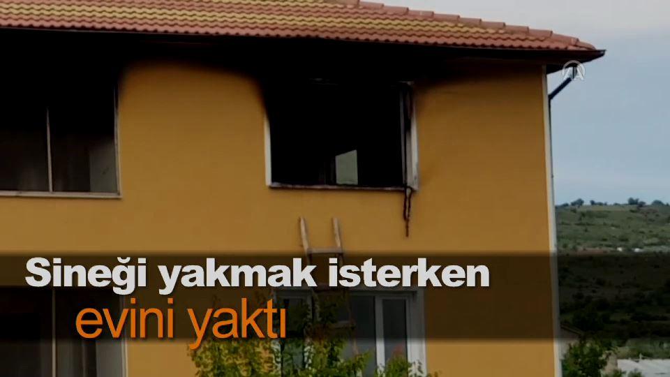 Sineği yakmak isterken evini yaktı