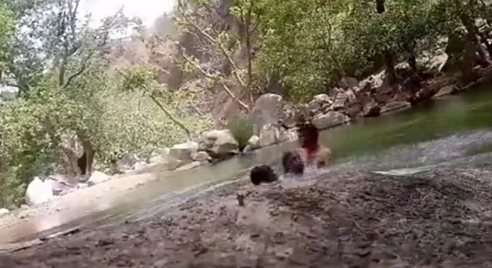Hindistan'da kendi boğulma anlarını çeken 3 arkadaş