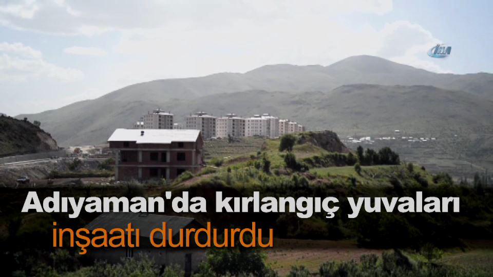 Adıyaman'da kırlangıç yuvaları inşaatı durdurdu