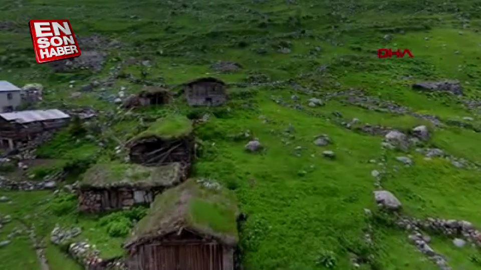 Yaylanın toprakla kaplı çim yetişen çatıları