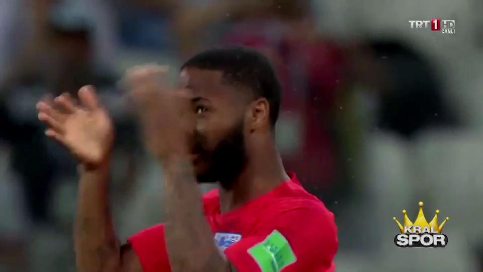 Dünya Kupası'nda sinek krizi
