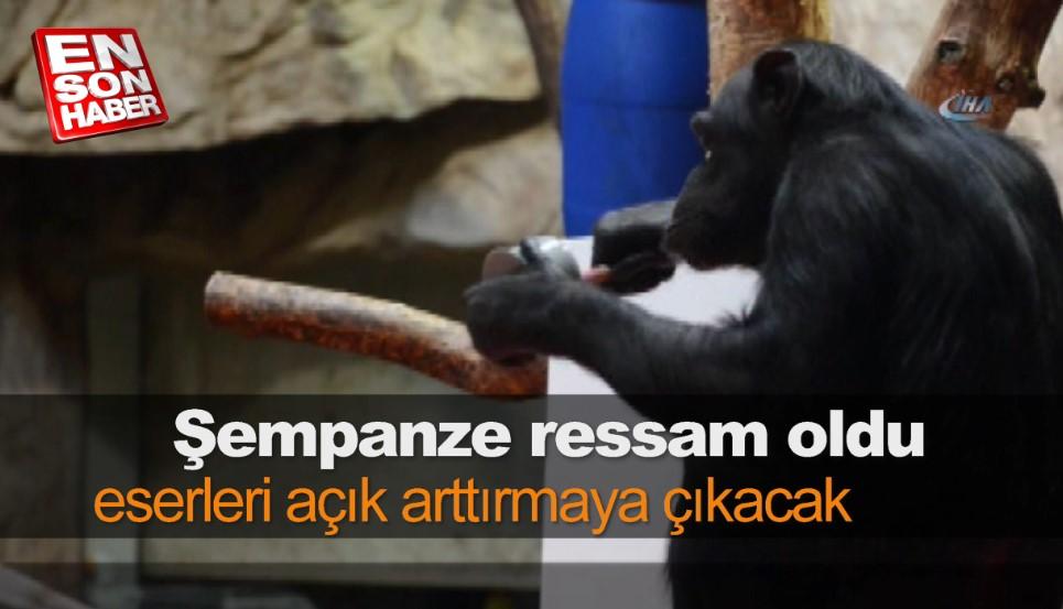 Ressam şempanzenin resimleri sergiye açıldı