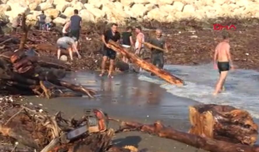 Sel sularından kışa yakacak odun topladılar