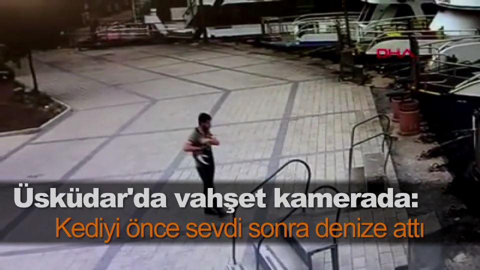 Üsküdar'da vahşet kamerada: Kediyi önce sevdi sonra denize attı
